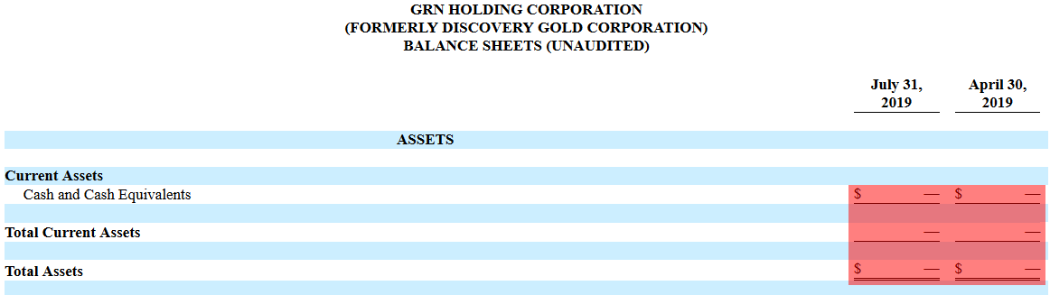 DCGD short report financials